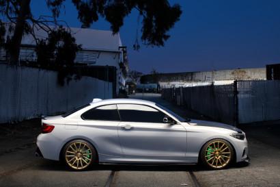 ディンマン -  BMW  -  2  - シリーズ - サヴィーニ - ブラック - ディ - フォルツァ -  BM9  - ブロンズ - ブライアン - マクギー -  4.jpg