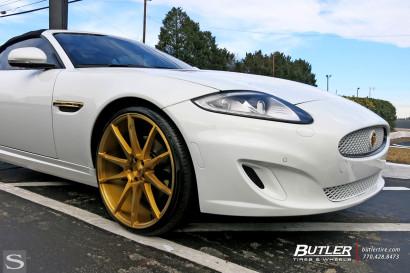 Савини-колеса-черный-ди-Forza-bm12-золото-Jaguar-XK-бело-дворецкий-4.jpg